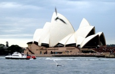 Sydney Harbour - Opera House