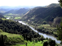 Wanganui River Road