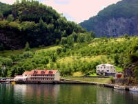 Sognefjord Town Scenes